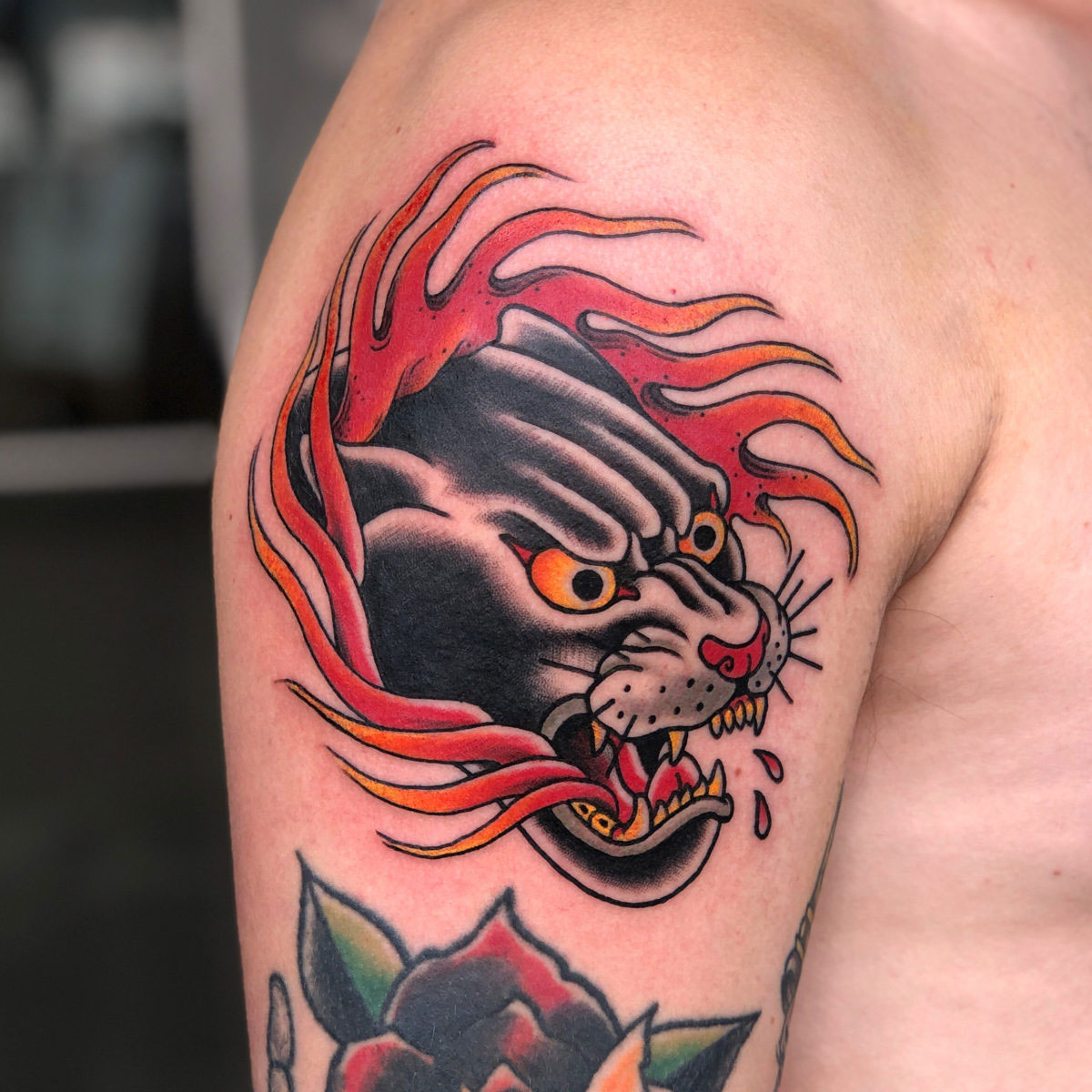 traditional panther tattoo with flames around tattooed in colour bright and bold on upper arm