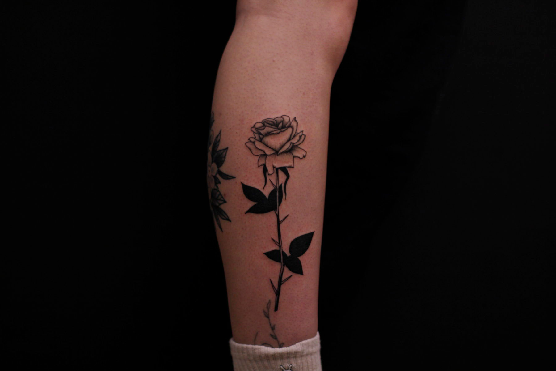 fine line minimalist floral rose tattoo with solid black leaves on forearm